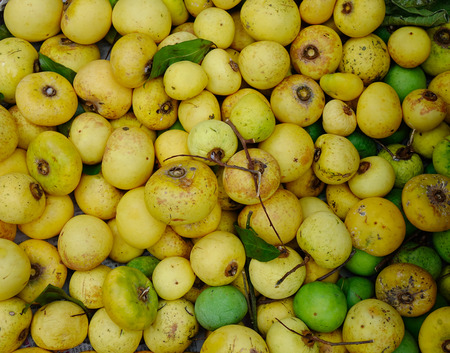 Diospyros decandra (gold apple) fruits at local market in Southern Vietnam.