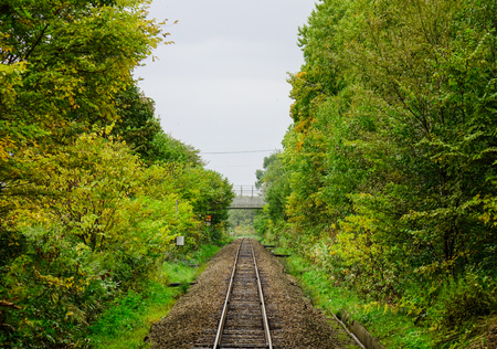Rail track at countryside Æ°Æ°ith many trees in Biei, Hokkaido, Japan.