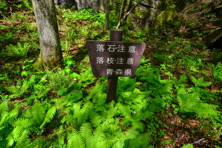 Aomori, Japan - May 16, 2017. Signboard at Oirase Gorge in Aomori, Japan. Oirase Gorge is a well-known picturesque locale, whether it is in the spring with fresh green leaves.