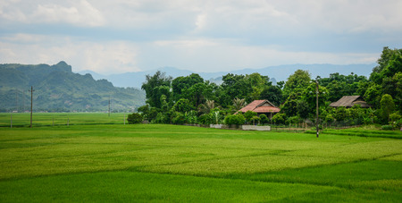 Rice field with small houses in Lai Chau Province, Northern Vietnam. Imagens