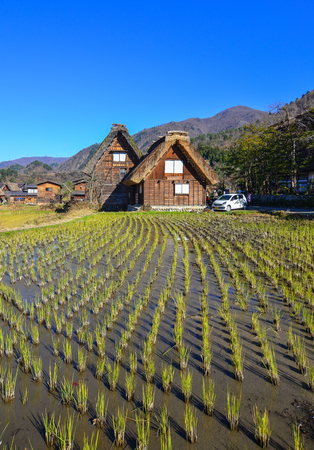 Gifu, Japan - Dec 2, 2016. Old wooden houses with rice field at Shirakawa-go Village in Gifu, Japan. Shirakawago was registered as a UNESCO World Heritage Site in 1995.