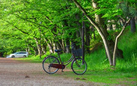 A bicycle parking at city park of Hirosaki, Japan.
