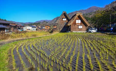 Gifu, Japan - Dec 2, 2016. Shirakawa-go Village with rice field at sunny day in Gifu, Japan. Shirakawago was registered as a UNESCO World Heritage Site in 1995.