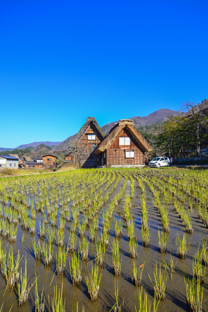 Gifu, Japan - Dec 2, 2016. Traditional wooden houses with rice field at Shirakawa-go Village in Gifu, Japan. Shirakawago was registered as a UNESCO World Heritage Site in 1995.