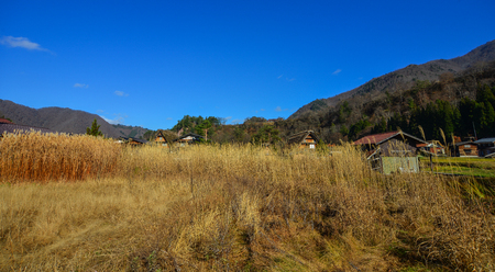 Grass field at traditional village in Gifu, Japan.