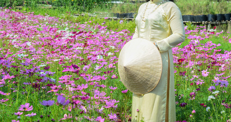 A Vietnamese woman in traditional dress standing at cosmos flower field.