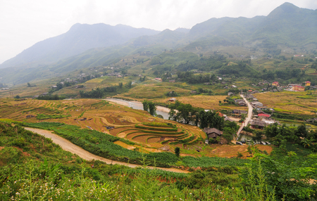 Terraced rice field with small town in Ha Giang Province, Vietnam. Terraced rice field is one of the most popular tourist attractions in Vietnam.