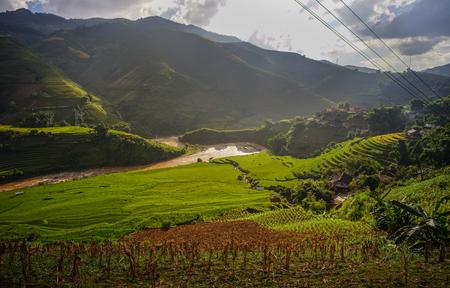 Terraced rice field in Yen Bai Province, Northern Vietnam. 写真素材