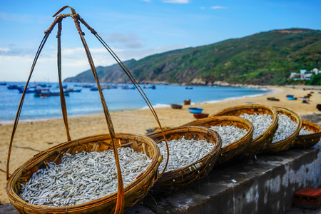 Bamboo baskets of fish on sand beach in South Coast of Vietnam. Stock Photo