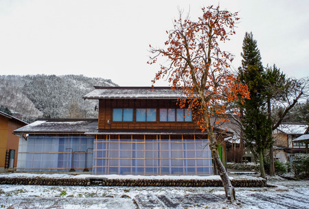 Historic Village of Shirakawago with persimmon tree at winter in Gifu, Japan. Stock Photo