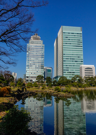 Tokyo, Japan - Jan 4, 2016. Green tree park with a pond in Tokyo, Japan. Tokyo has the largest metropolitan economy in the world.