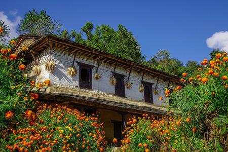 A rural house with flowers in Ghandruk, Nepal. Ghandruk is a popular place for treks in the Annapurna range of Nepal.