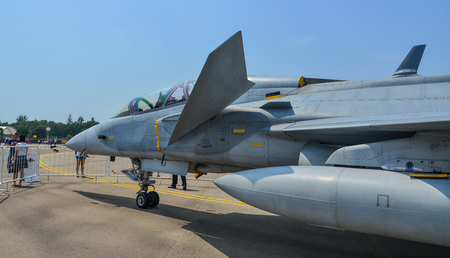 Singapore - Feb 10, 2018. A Saab JAS 39 Gripen fighter aircraft belong to the Singapore Air Force on display in Changi, Singapore. 写真素材 - 98449065
