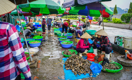 Ha Long, Vietnam - May 23, 2016. Fishing market in Ha Long, Vietnam. Ha Long is the capital city and 1st-class provincial city of Quang Ninh Province, Vietnam. Editorial