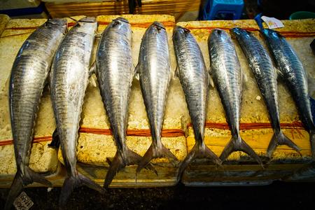De verse vissen bij lokale markt in Ha snakken, Vietnam. Stockfoto - 99083583