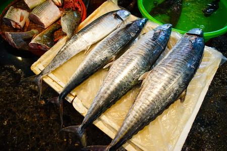 De verse vissen bij lokale markt in Ha snakken, Vietnam. Stockfoto - 98983162