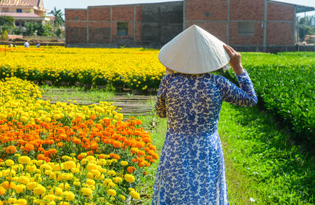 A Vietnamese woman in traditional dress (Ao Dai) standing at flower field.
