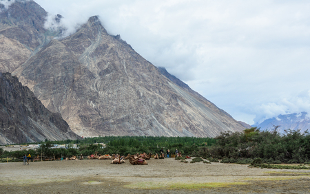Mountain scenery in Nubra Valley, Ladakh, Northern India.