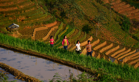 Sapa, Vietnam - May 28, 2016. Children playing on rice field in Sapa, Vietnam. Sapa is a frontier township and capital of Sa Pa District in Lao Cai Province.