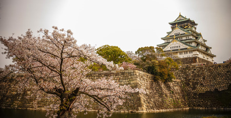 View of Osaka Castle (Osaka-jo) with cherry blossom. The castle is one of Japan's most famous landmarks.