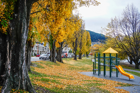 Haast, New Zealand - Apr 30, 2015. Autumn park in Haast, New Zealand. Haast is an area in the Westland District territorial authority on the West Coast of South Island.