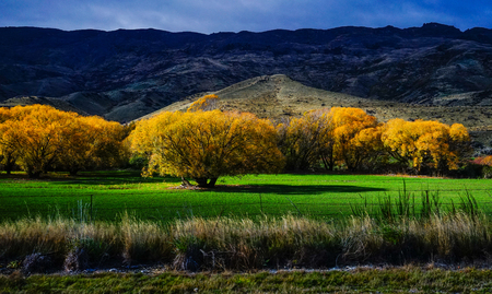 Autumn scenery of Haast Township, South Island, New Zealand.