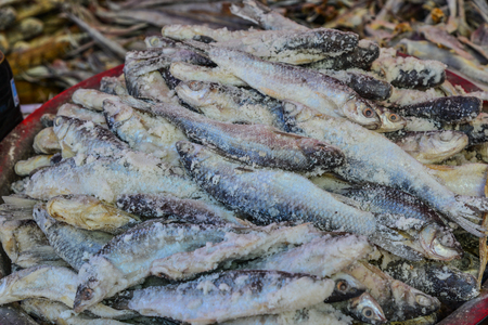 Traditional Asian fish market, stall full of dried seafood in Taunggyi, Shan state, Myanmar (Burma). Stock Photo
