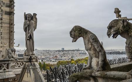 Chimère (gargouille) de la cathédrale Notre-Dame de Paris (France). Éditoriale