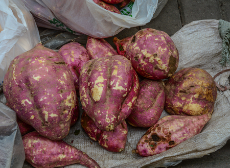 Japanese sweet potato at rural market in Nanning, China. Banque d'images