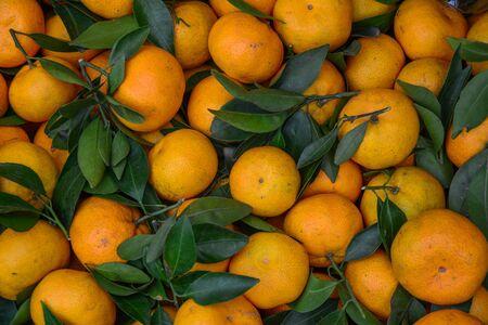 Ripe and tasty mandarin (tangerine) for sale at rural market.