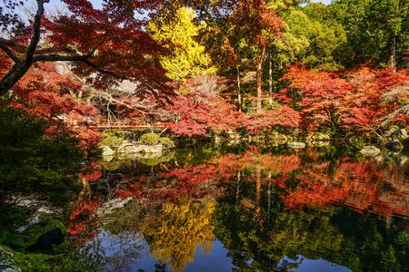 Autumn scenery with the lake at sunny day in Kyoto, Japan. Фото со стока
