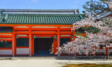 Old cherry trees with flowers at ancient Shinto Shrine in Kyoto, Japan.