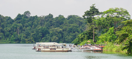 Singapore - Aug 17, 2014. Tourist wooden boats on a forest lake of Singapore Botanic Garden in sunny day. Editorial