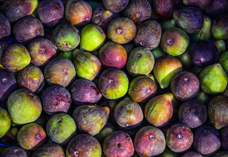 Purple figs in containers are on sale in fruit market. Stock Photo