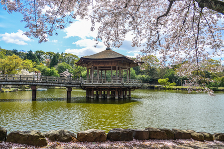Nara, Japan - Apr 11, 2019. Sagi-ike Pond with the Ukimido Gazebo during cherry blossom in Nara Park (Japan).