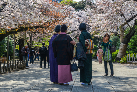 Tokyo, Japan - Apr 7, 2019. People enjoying cherry blossom (Hanami) in Tokyo, Japan. The cherry blossom tree in Japanese culture goes back hundreds of years.