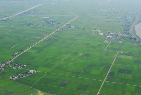Aerial view of paddy rice field at summer day near Narita, Japan.