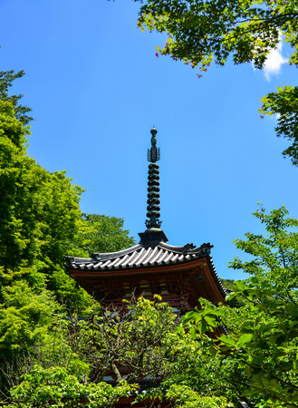 Top of ancient Buddhist temple in Kyoto, Japan. Editorial