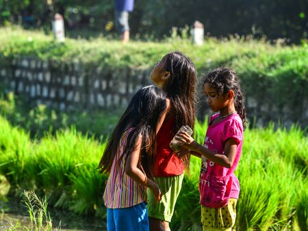Can Tho, Vietnam - Sep 2, 2017. Girls playing on paddy rice field in Can Tho, Vietnam. Rice production in the Mekong Delta is important to the food supply.
