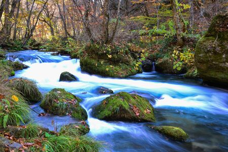 Oirase Stream in sunny day, beautiful fall foliage scene in autumn colors. Flowing river, mossy rocks and waterfall in Towada Hachimantai National Park, Aomori, Japan. 写真素材
