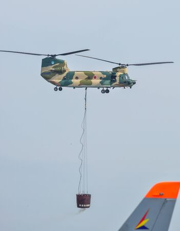 Saitama, Japan - Nov 3, 2019. Kawasaki CH-47J Chinook helicopter of Air Self Defence Force (JASDF) flying for display at Iruma Air Base (RJTJ) in Saitama, north of Tokyo, Japan.