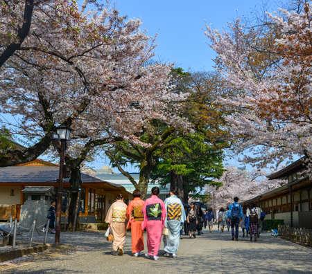 Tokyo, Japan - Apr 7, 2019. Women in kimono dress enjoying cherry blossom (hanami). Hanami festivals drive billions into the economy as tourists flock to see the beautiful blossoms. 新聞圖片