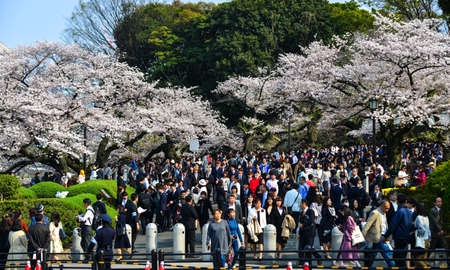 Tokyo, Japan - Apr 7, 2019. Crowd of undefined people prevent freedom of movement walking on the street around Tokyo Downtown during royal festival. 新闻类图片