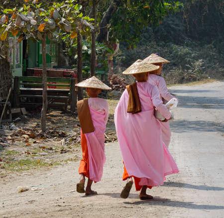 Mandalay, Myanmar - Feb 21, 2016. Buddhist nuns walking for morning alms at countryside in Mandalay, Myanmar.