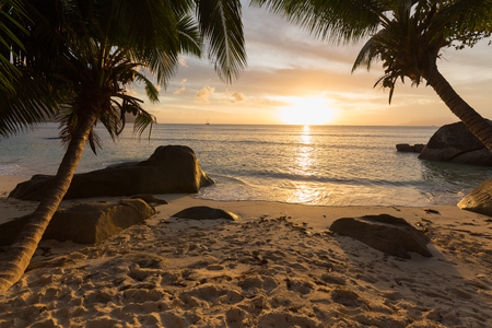 Sunset at tropical beach with palm trees framing the view