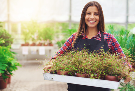 Smiling woman working in a commercial nursery selling plants to the public standing holding a tray of potted houseplants in her hands as she smiles at the camera Imagens