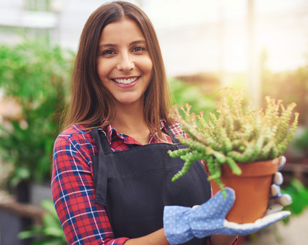 flower nursery: Smiling attractive young female employee at a flower nursery holding a potted plant for sale in her hands, glowing sun in the background Stock Photo