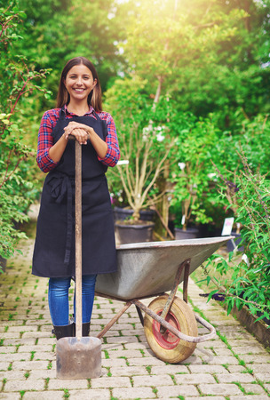 Smiling young woman transplanting nursery stock standing with a potted plant in a wheelbarrow in the greenhouse leaning on a spade and smiling at the camera