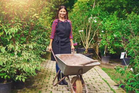 smiling woman in a greenhouse: Young woman working in a nursery greenhouse standing on a path amongst potted plants with a wheelbarrow and spade smiling at the camera