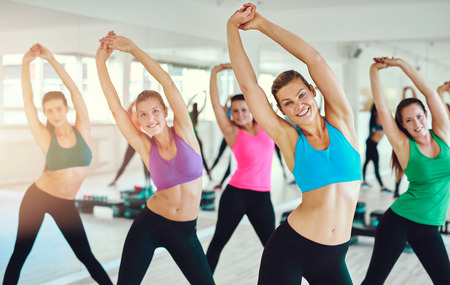 sport training: fitness, sport, training, gym and lifestyle concept - group of smiling people exercising in the gym
